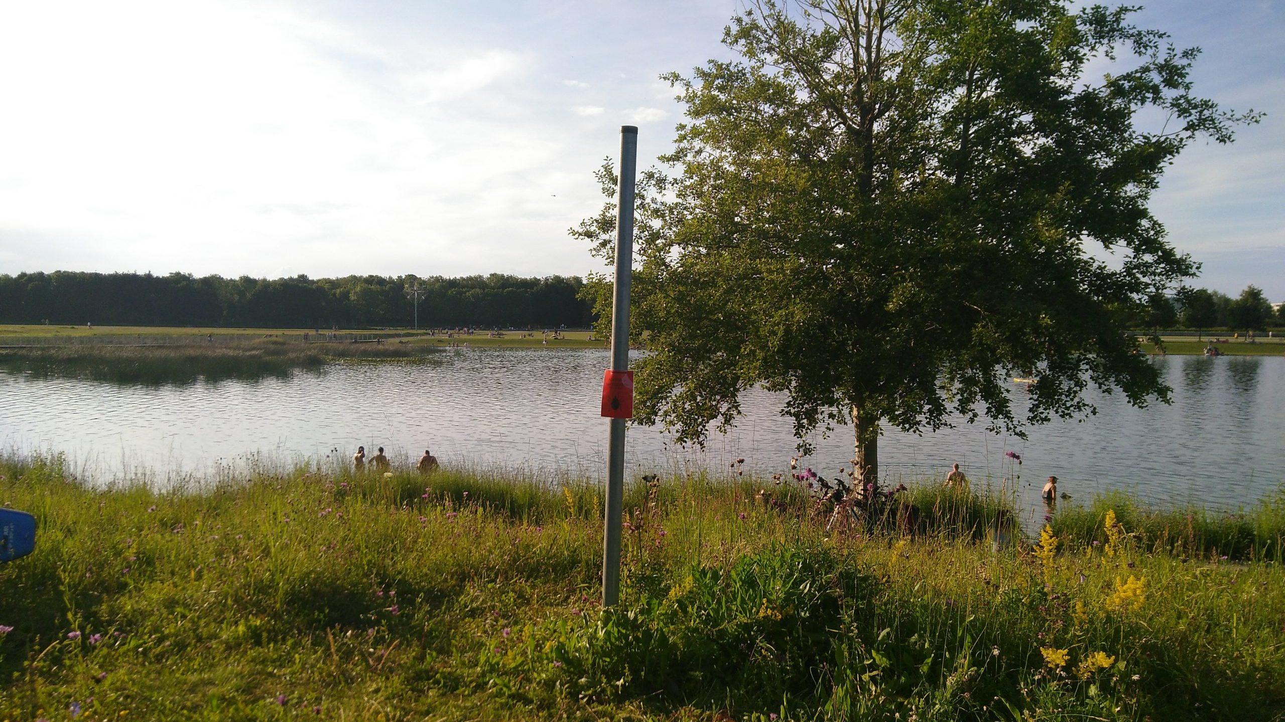 Schutz von Biotopen im Süd- und Westbereich des Sees
