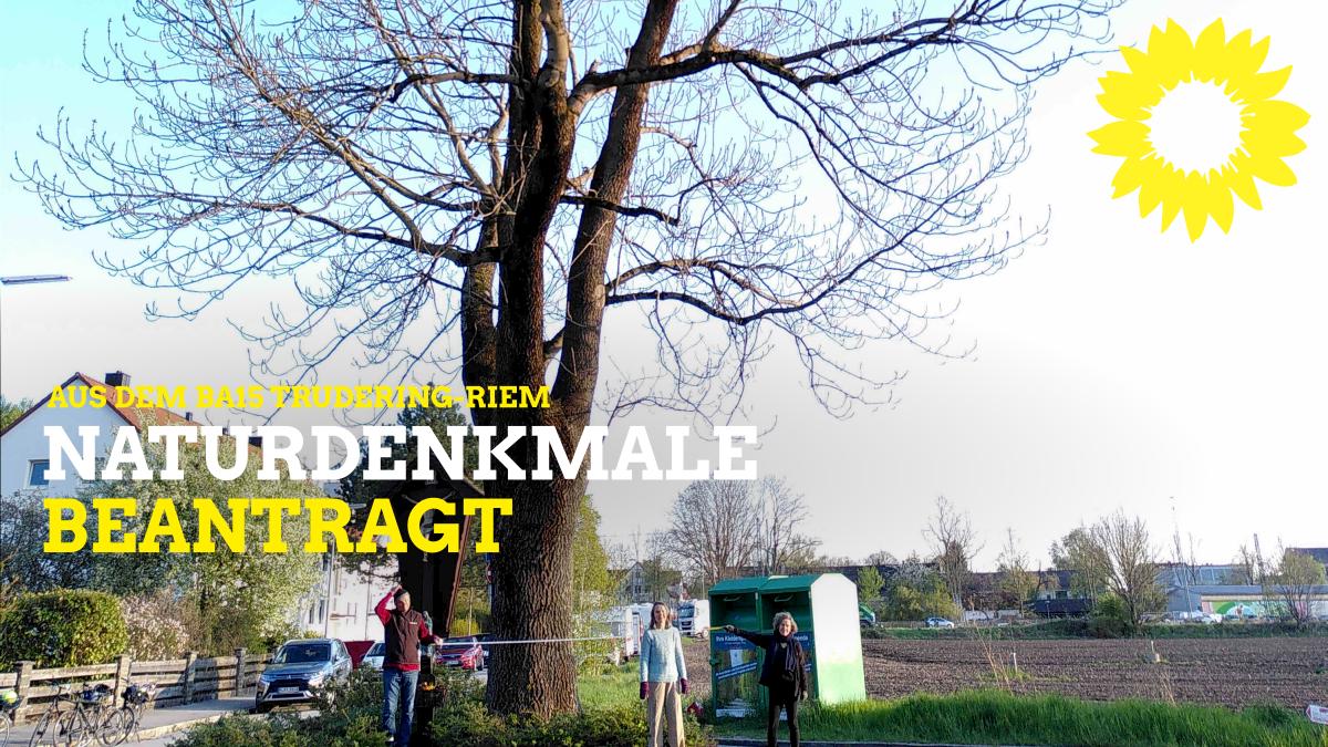 Neue Naturdenkmale für Trudering-Riem